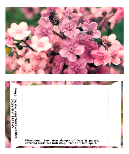 Business Card Pink Forget-Me-Not Seeds